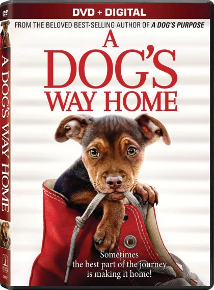Dog's Way Home