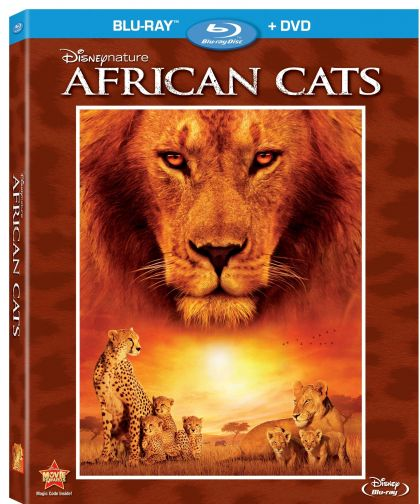 African Cats -blu